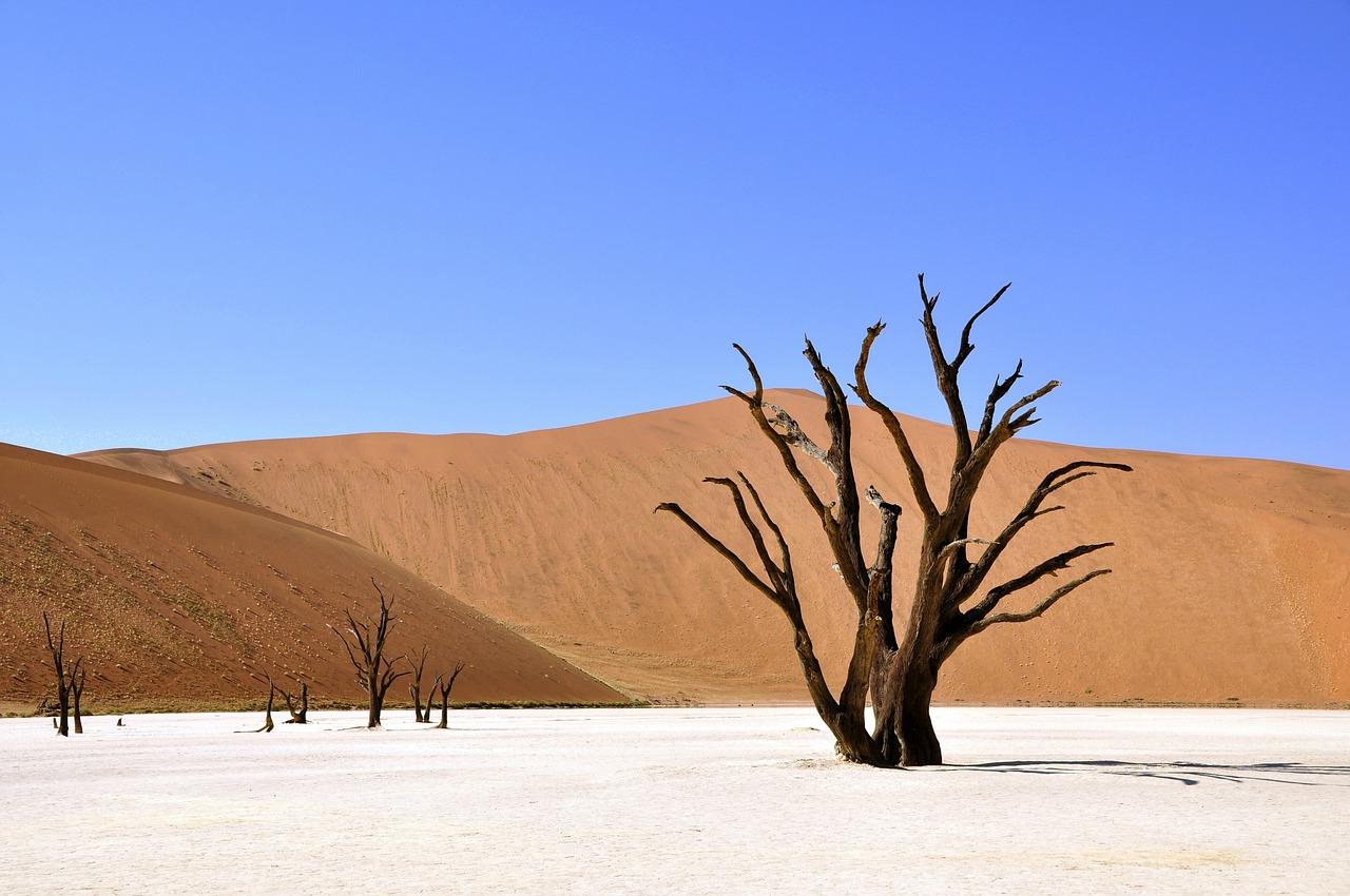 ultieme huwelijksreizen namibie